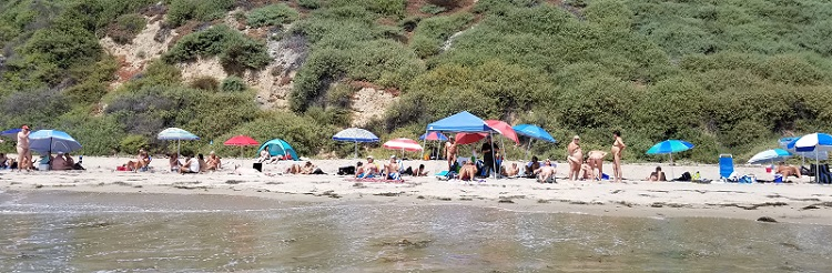 Bates Beach clothing optional section reestablished in 2017