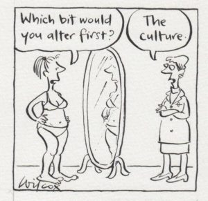 body image culture cartoon wilcox women naturism felicitys blog