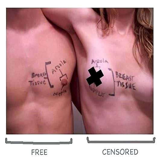Male Breasts and Nipples Vs Female Breasts and Nipples