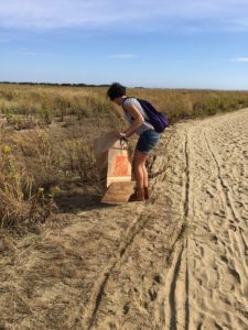 gunnison beach cleanup litter trash nude beach sandy hook nj yna felicitys blog