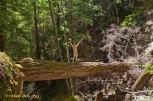 naked nature nudist man outdoors forest felicity's blog