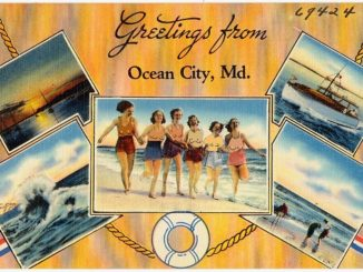 topfree ordinance ocean city maryland lawsuit topless topfreedom felicitys blog