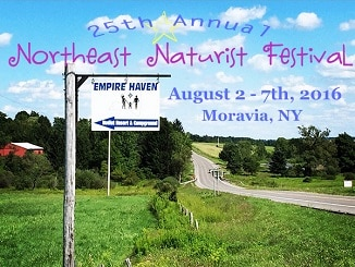 Northeast Naturist Festival 2016 at Empire Haven Nudist Park
