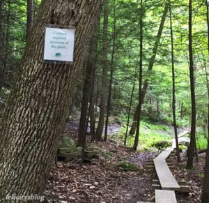 mohonk preserve nude sunbathing clothing required sign coxing trail new paltz felicitys blog