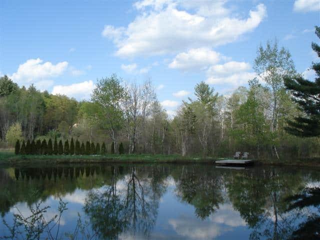 Swimming pond at Abbott's Glen
