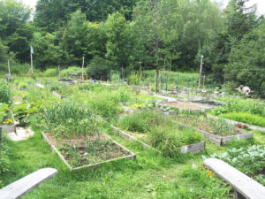 coventry nudist resort community garden vermont review felicitys blog